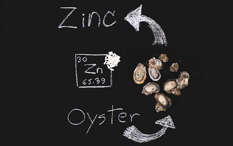 Examining the Science between Diet and Performance: Testosterone, Zinc and the Oyster Connection